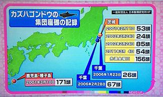 《 地震予知のさまざまな方法 》_mini