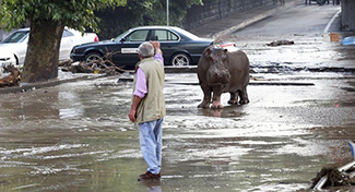 《 グルジアの洪水 》_mini